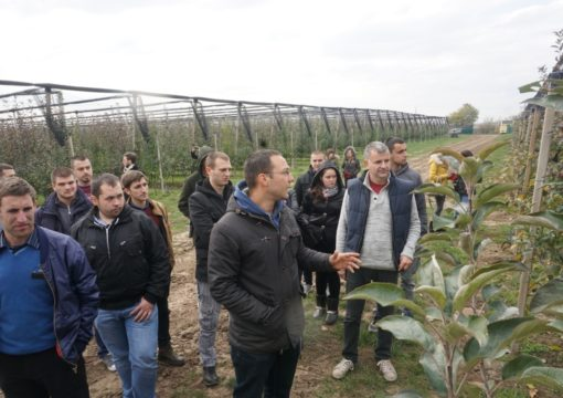 Students from Agricultural Faculty Zemun visited our orchard